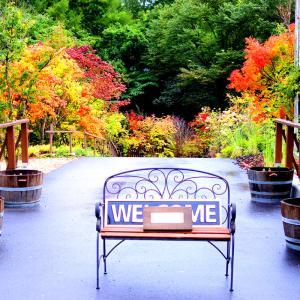 今日の軽井沢の紅葉はこんな感じ♪