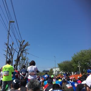 2019年 仙台国際ハーフマラソンに出場してきました!