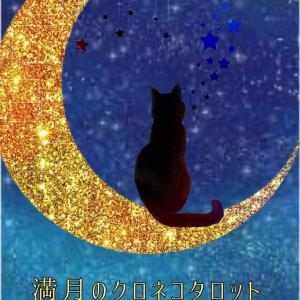 夢を夢では終わらせない満月のクロネコタロット鑑定にゃ