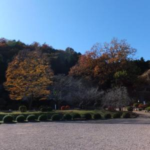 晩秋の武州旅*東秩父村「和紙の里」
