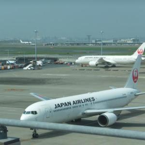 運休により韓国旅行を延期いたしました。