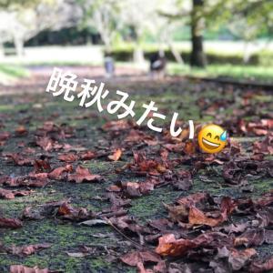 ハロウィンな10月\(^o^)/