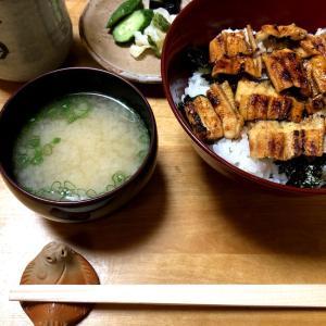 尾道さんぽvol.3 「鮨と魚料理 保広」