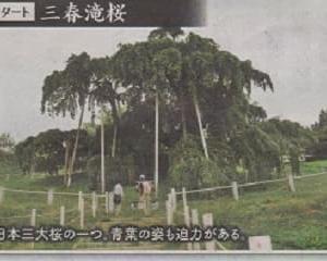 新奥の細道「滝桜の城下町三春」を訪ねる