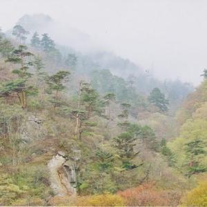 夏井川の山水