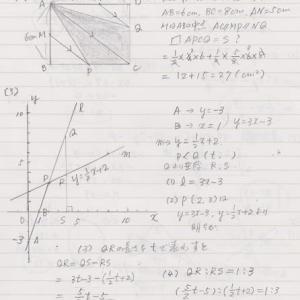 支援数学の解答その2