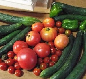 我が家の今朝の野菜