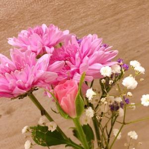お花の定期便を利用しました!
