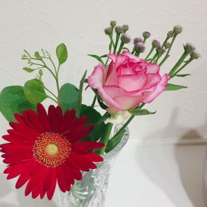 お花の定期便届きました〜