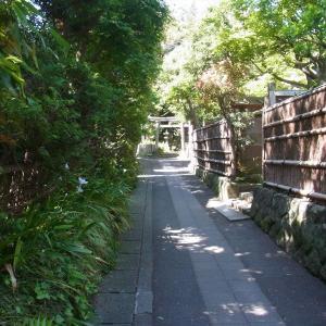 おちゃぶき小路~鎌倉らしい風景に出会える小路~