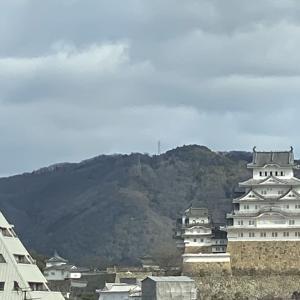 鮮やかな白の城壁...世界遺産の姫路城 姫路②