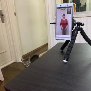 オンラインお試しレッスン&猫たち