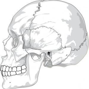 即効性→頭蓋骨の歪みをリセットする方法