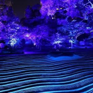 博多千年煌夜に行ってみた。(夜景モ-ドは難しい!)