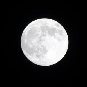 今日は満月!やるといいことは?