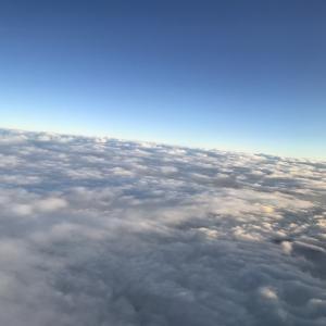 キャセイパシフィック航空特別機内食、インディアンベジタリアン。