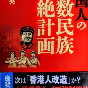 「中国人の少数民族根絶計画」❸ 楊 海英著 2020年1月発行