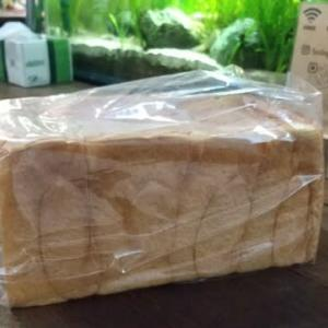 477号:バイオフィリア・食パン