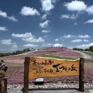 初夏の茶臼山高原へ!