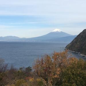 どこを見ても富士山