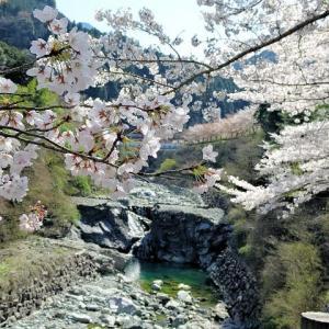 2019, 春の瀬戸内路 「しまなみ海道から東洋のマチュピチュ 別子銅山へ」