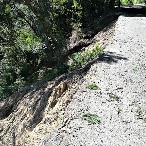 山の畑の道路復旧
