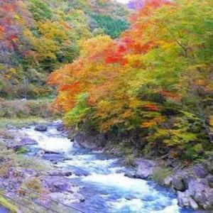本物の平家の落人集落の秘境、湯西川温泉と定義温泉