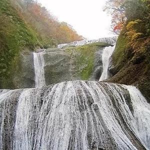 「日本民族とは?(1)自然の風景や花々を愛する民族」