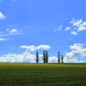 「北海道の風景です」