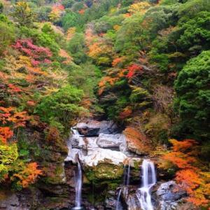 「徳島県の紅葉と清流の絶景」