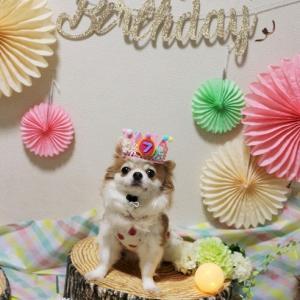 空ちゃん7歳のお誕生日