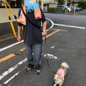 じぃじとお散歩