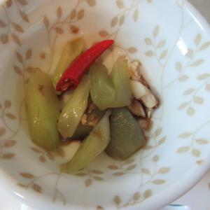 チシャトウの中華風和え物