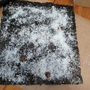 海苔ココナッツ 試作