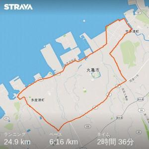 不定期投稿 ウルトラマラソン完走挑戦! その3