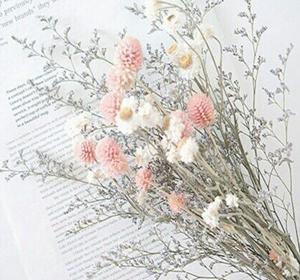 お花のある暮らしを手軽に始めてみませんか