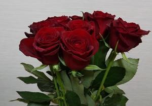 おうち時間!プレゼントされたバラの花束を飾ってみました