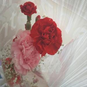 ~ お部屋のインテリアにときめきの花を添えて ~