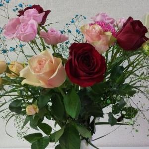 お祝いに大きなバラの花束をいただきました