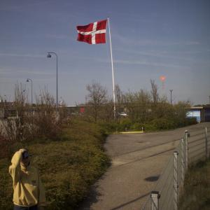 フェリーから降りた渡り鳥ライン!列車はコペンハーゲンへ!