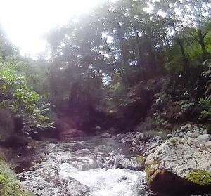 渓流美が魅力の余市川支流・然別川