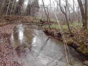 冬でも釣行できる札幌近郊の湧水渓流<br />
