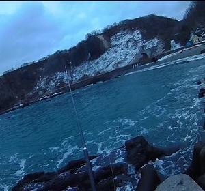 今年の初トラウトは50センチクラスの海アメ<br />