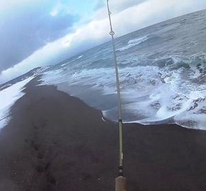 精進川海岸の初釣行でアメマス3匹