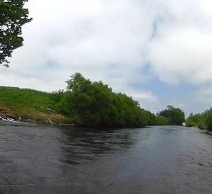 まだ水量の多い尻別川本流