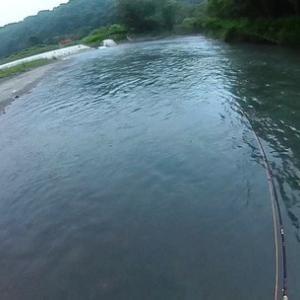 日高釣行第1弾、新冠川でヤマメ確認できず