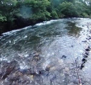 7月最後の釣行先は、渇水避けて尻別川へ