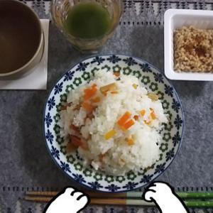 最近の食事(ちらし寿司/鯖/皿うどん)、街猫さんたち