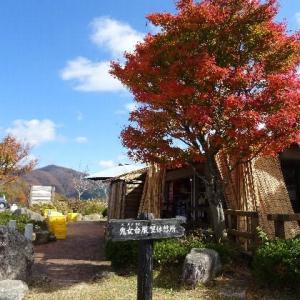 紅葉する鬼女台展望休憩所から見る大山 2019.11.06