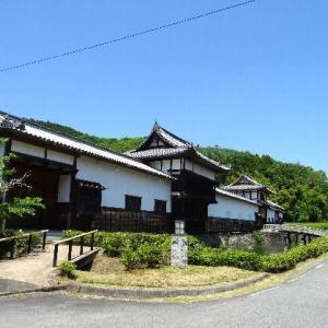 乃井野陣屋のルピナス 2019.05.22